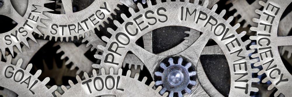 Capventis business improvement process